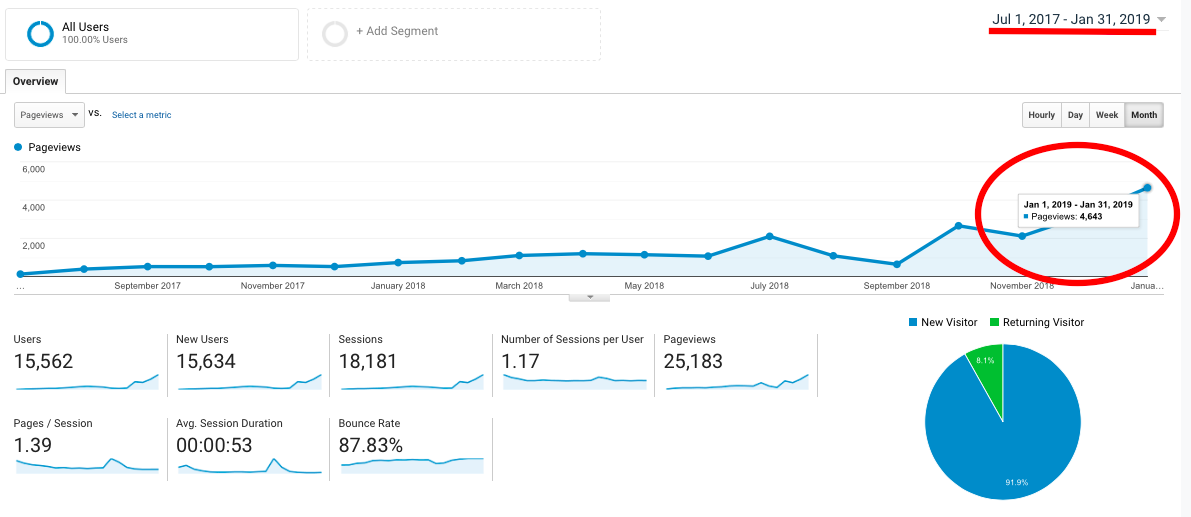 SEO Case Study: Analytics Screenshot